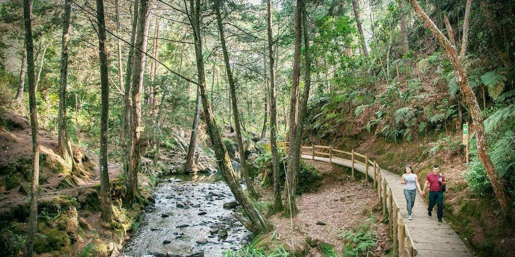 Inside the park, photo courtesy of Parque Arvi