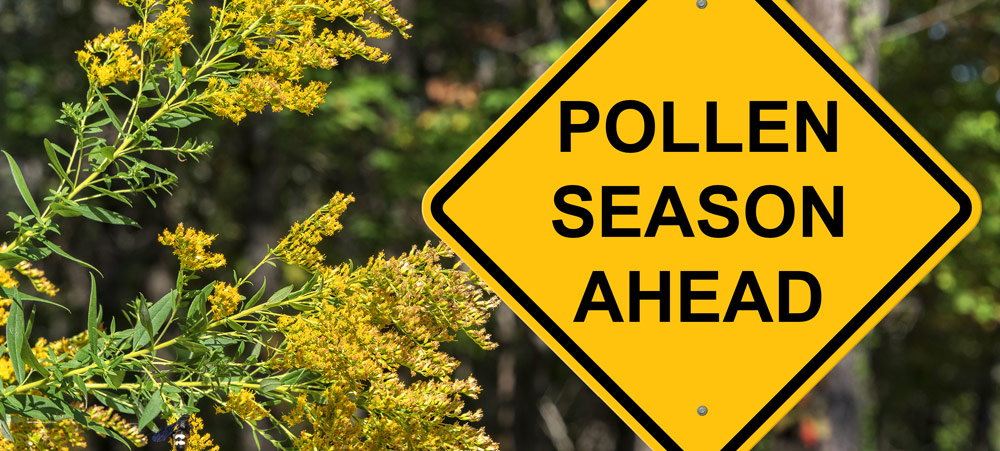 Managing Pollen Reactions