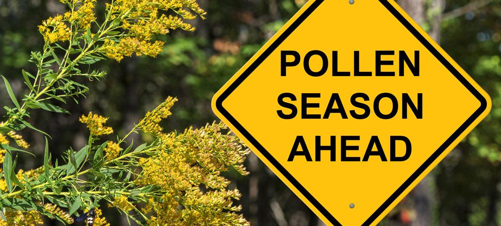 Managing Pollen Reactions