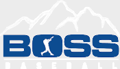 Boss+Baseball+Logo_sm_v2