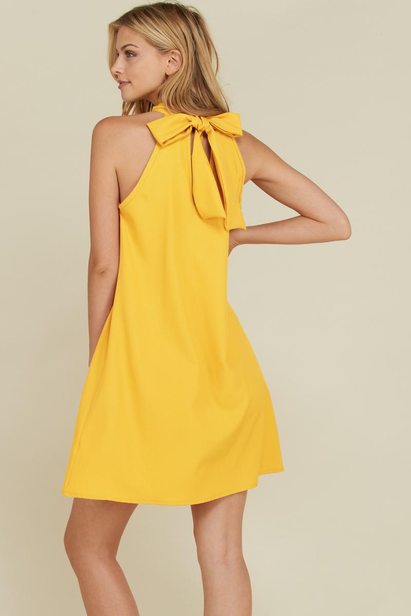 High Neck Bow Tie Back Halter Dress Back