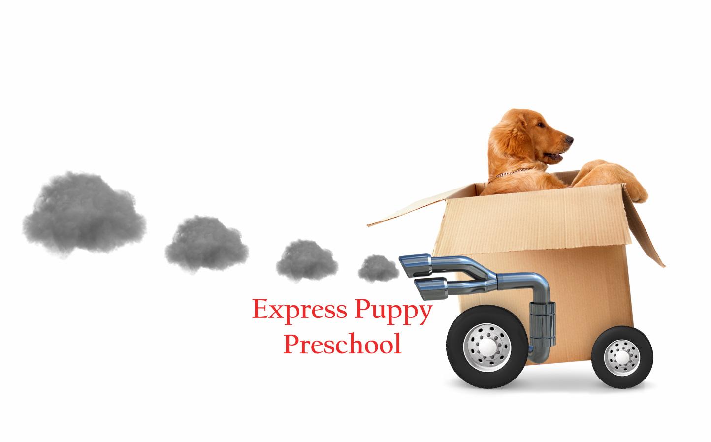 express puppy preschool