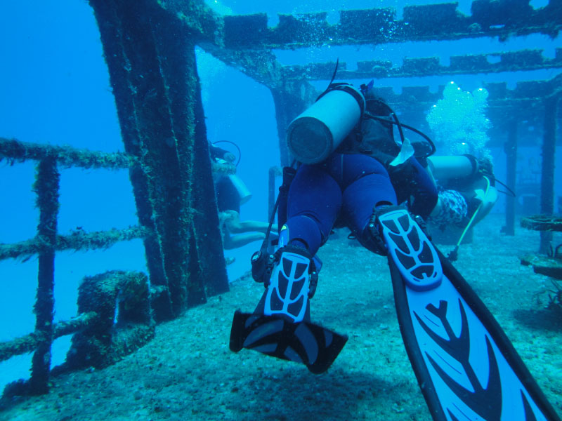 Wreck Dive in Cozumel