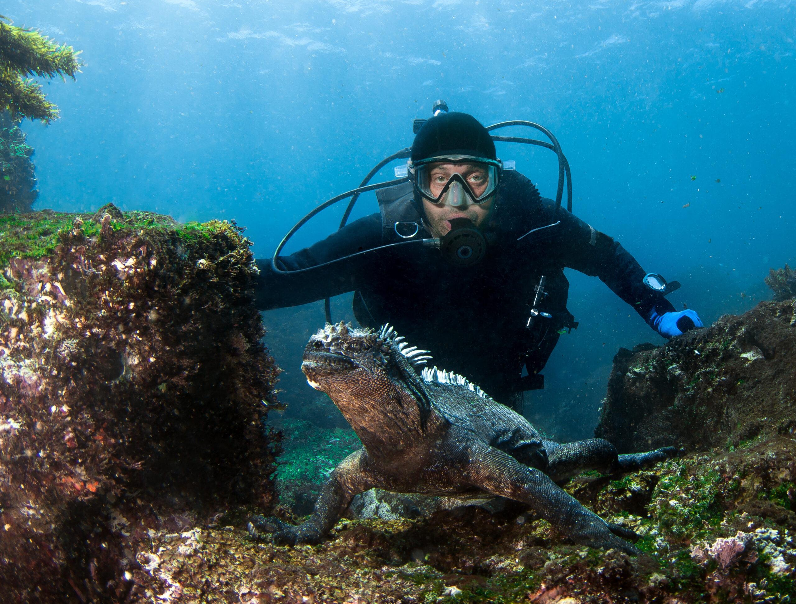Scuba Diving in Galápagos Islands