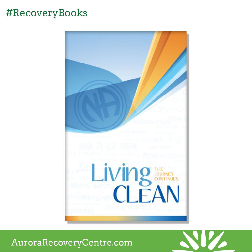 Living Clean The Journey Continues - NA