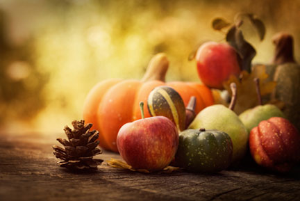 eating disorders thanksgiving guide