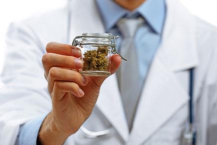 marijuana maintenance explained