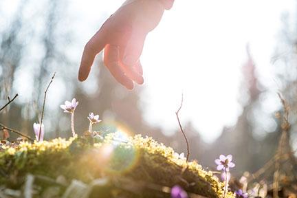 twelve steps spiritual healing