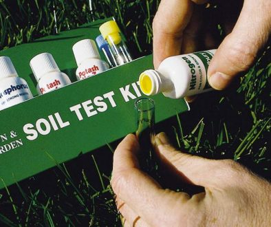 blog_soil_evaluation