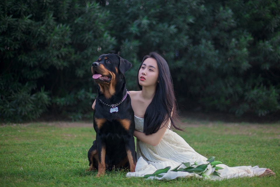 picnoi japanese lady and dog