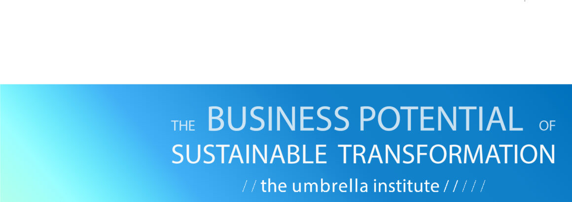 The Business Potential of Sustainable Transformation