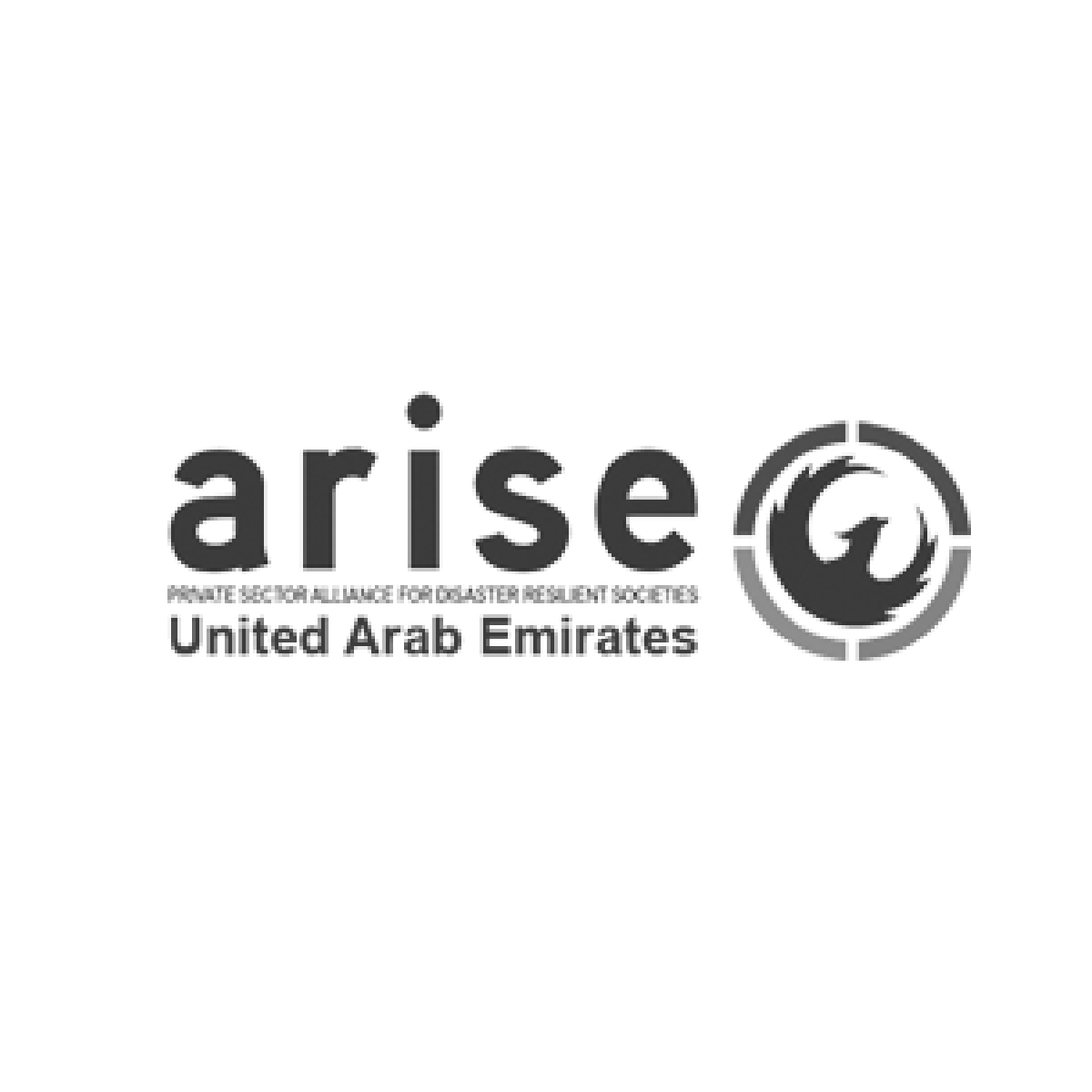 partner ARISE UAE
