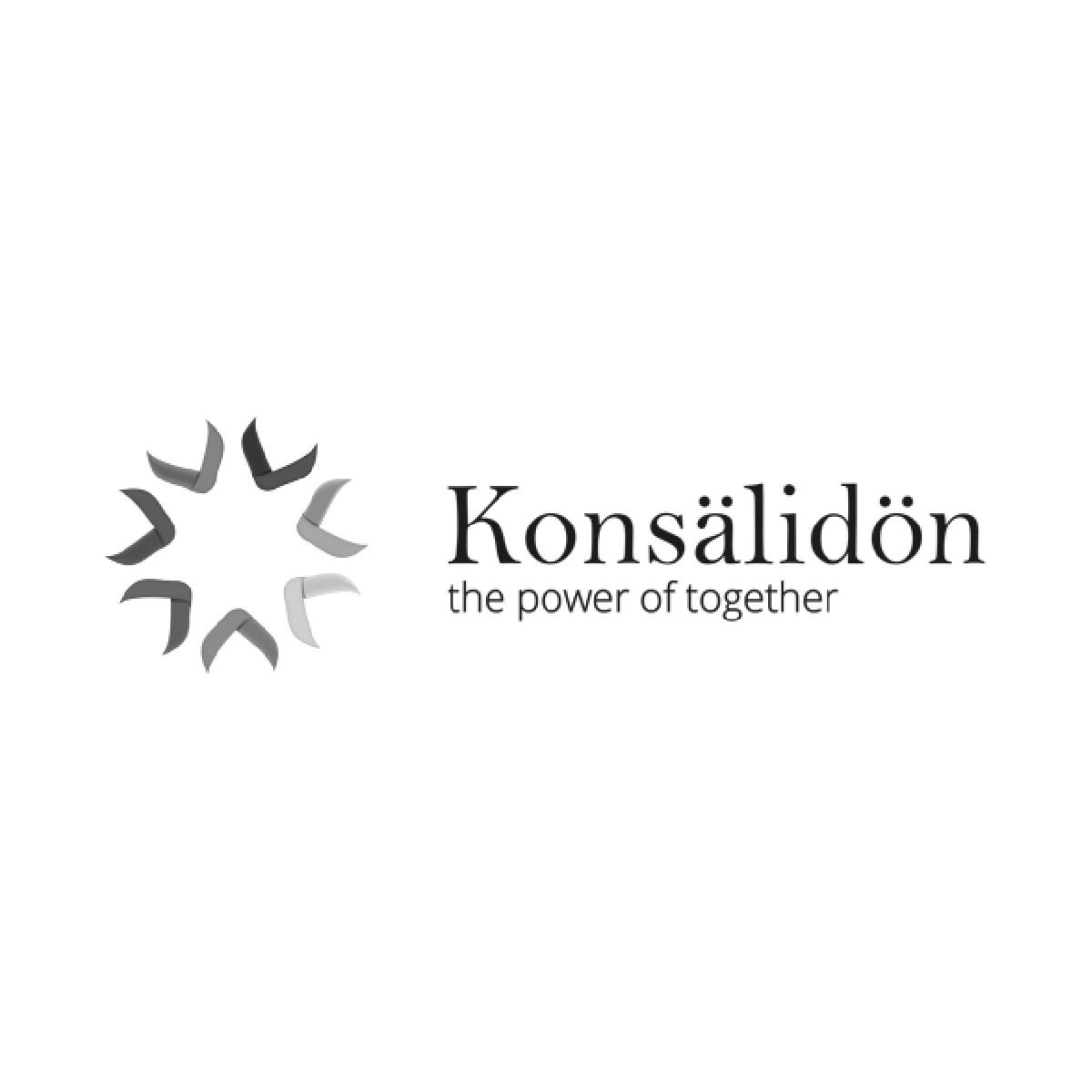 Partner Konsalidon
