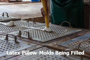 Latex Pillow-Mold