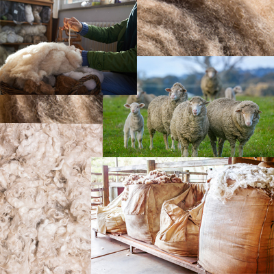Wool Collage
