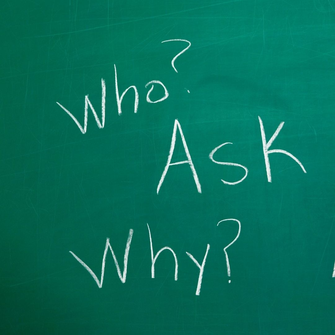 ask questions all the time