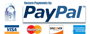 Secure Donations with PayPal