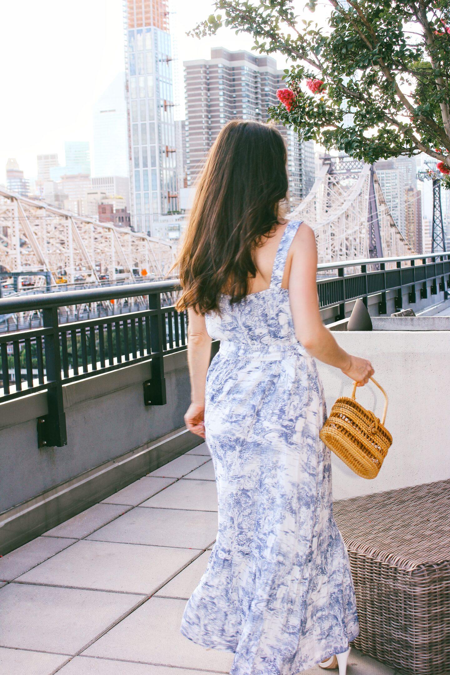 blue-white-toile-print-dress