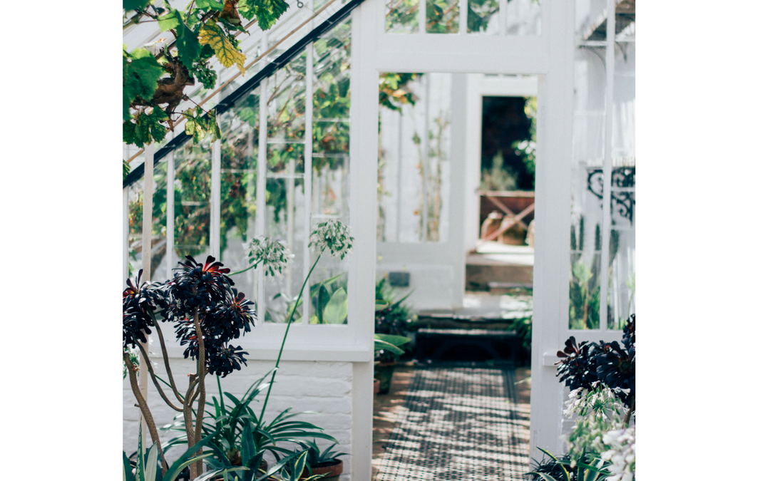 How to bring Feng Shui Outside