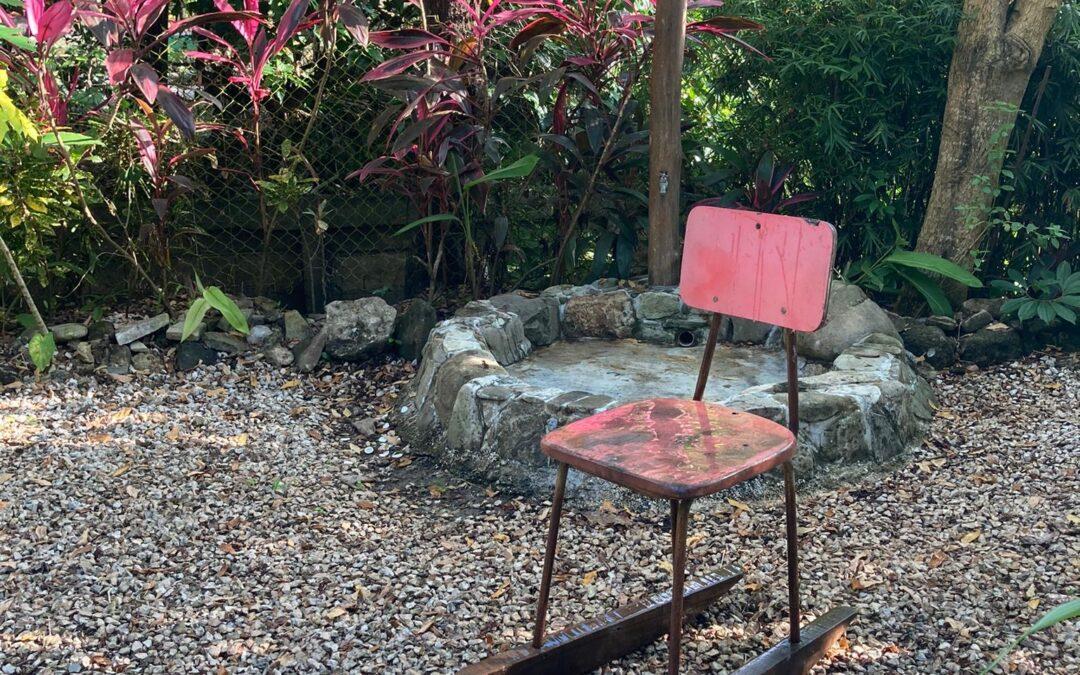 Harmonize your Garden with Feng Shui