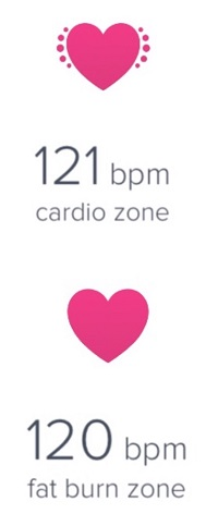 endurance heart rate training