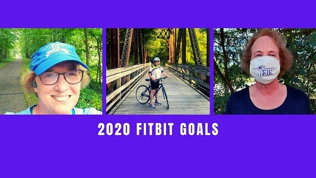 2020 Fitbit Goals