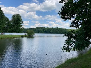 Staying cool by walking around a lake in the shade