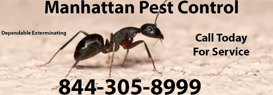 Manhattan Pest Control