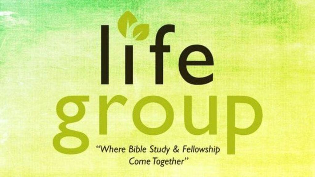 Ladies Online Life Group