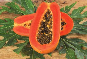 A daily dose of papaya and/or peppermint can aid in healing and digestion.