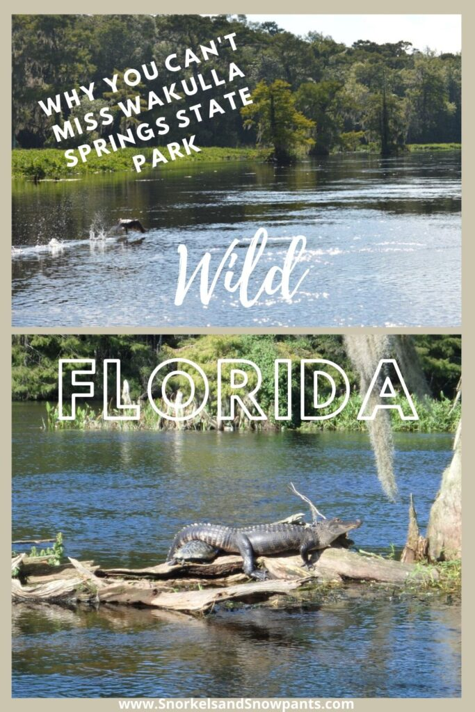 Wakulla Springs State Park is a step back in time to Old Florida!