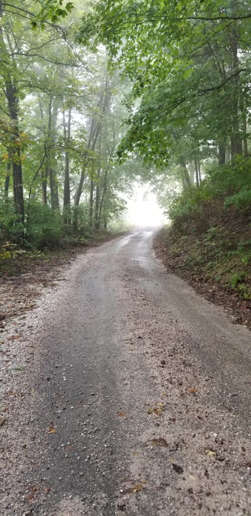 Dirt road covered in fog