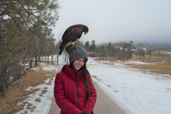 Unusual things to do in colorado springs