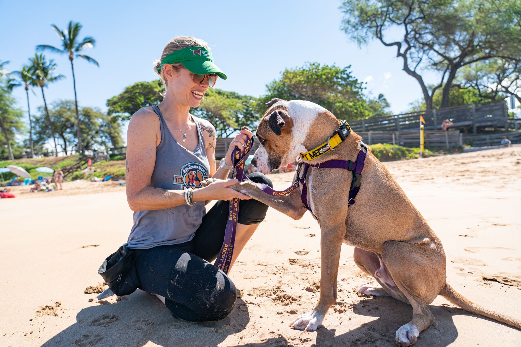 Woman and dog on the beach shaking hands/paws