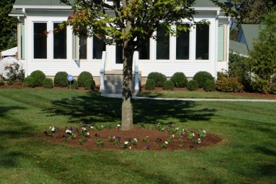 Lawn Masters of Kentucky | Central Kentucky Lawn Care | Lawn Care Services