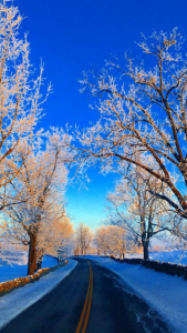 Lawn Masters of Kentucky | Central Kentucky Lawn Care | Snow and Ice Management