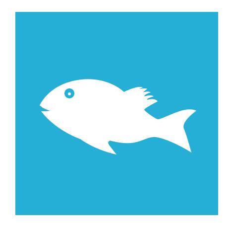 fishing-icon-new-york