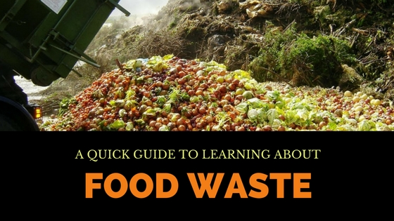 Food Waste Guide