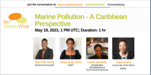 Marine Pollution - A Caribbean Perspective