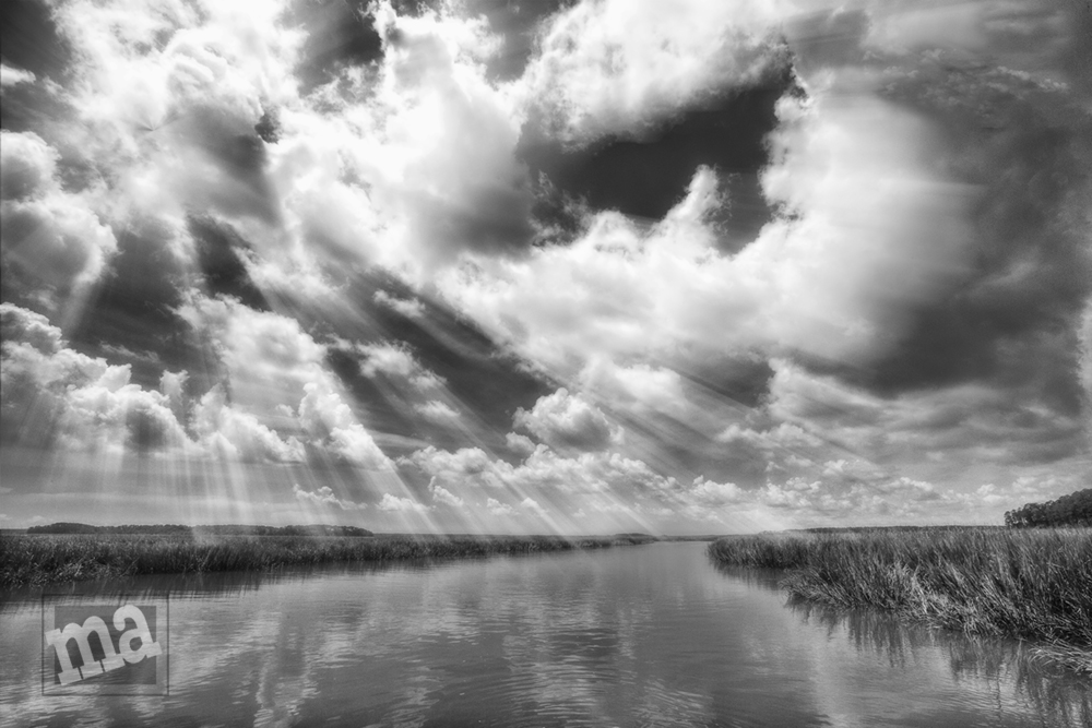 Spectacular Low Country by Marge Agin