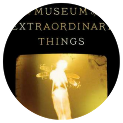 The Museum of Extraordinary Things, by Alice Hoffman