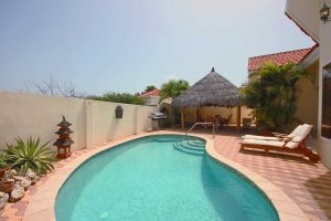 Your private outdoor area with swimming pool, BBQ grill, large palapa and outdoor furniture
