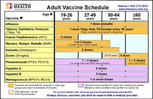 adlt_vac_schedule