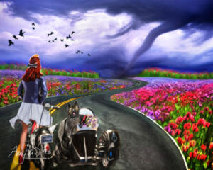 Storm Chaser • Amy Ditto