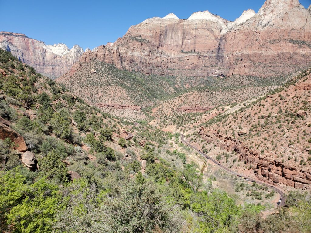 Canyon Overlook in Zion N.P.