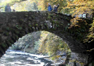 Cultural tour of Scotland