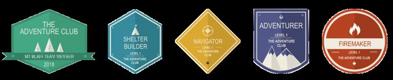 5 different badges