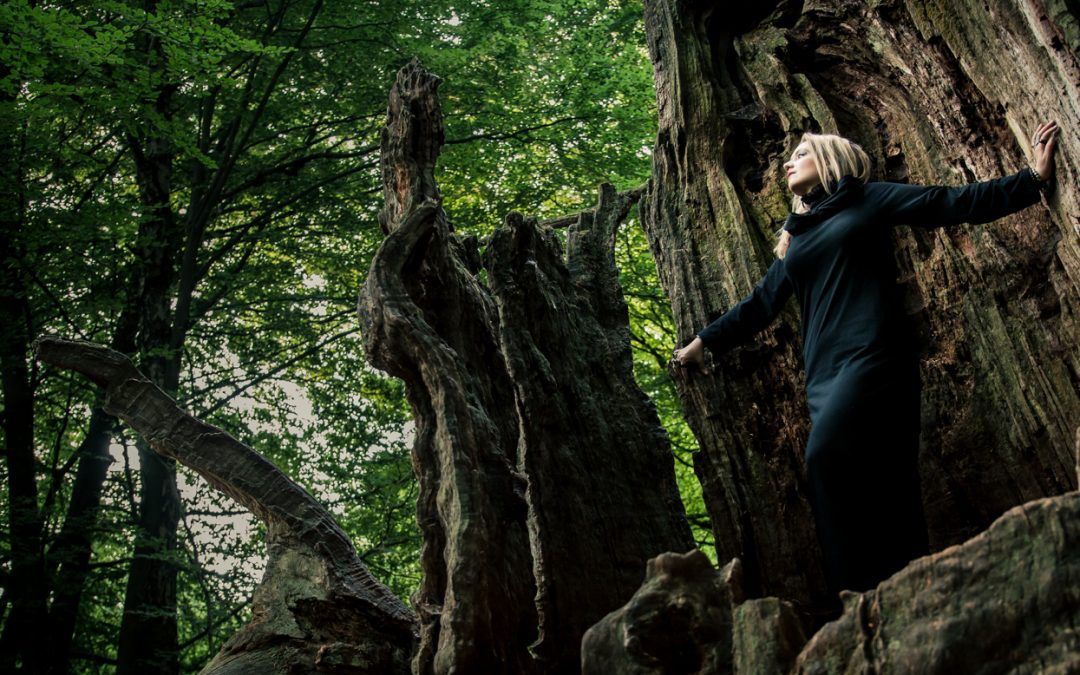 Forest bathing: How to do it in your own neighbourhood for free