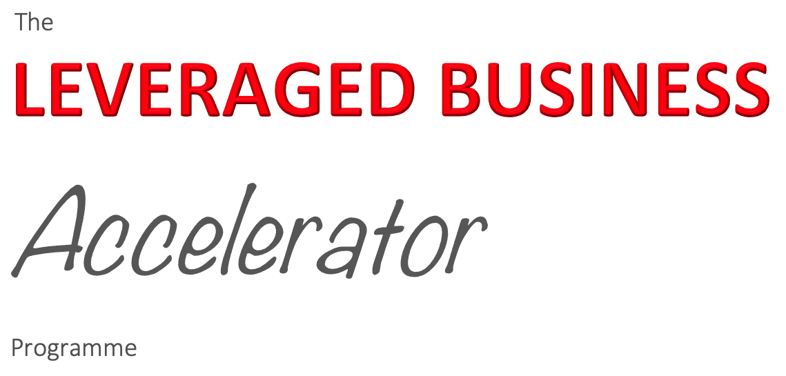 leveraged business accelerator programme