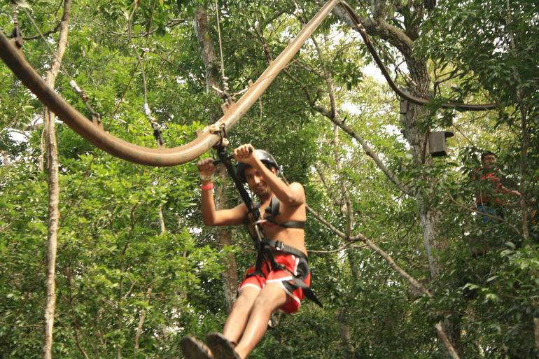 Avatar-Zipline-rides-1.jpg